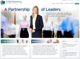 CFS_New Site
