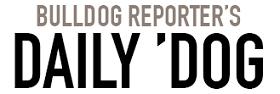 dd_theme_logo